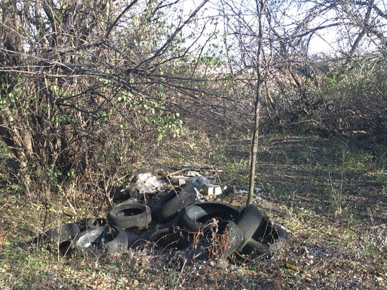 The state Department of Environmental Protection plans to turn a trash-strewn landfill in Cramer Hill into a recreational area.