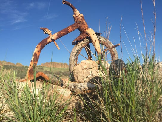 A relic from before Devil's Backbone Open Space was