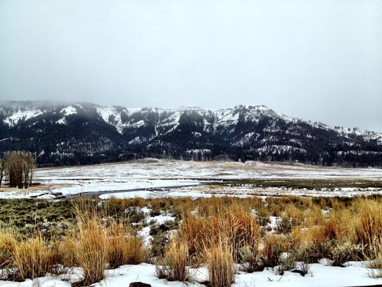 Soda Butte Creek in the Lamar Valley, Yellowstone National