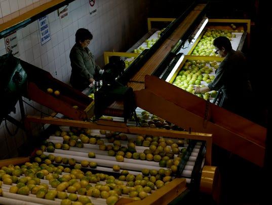 AP imported lemons.jpg