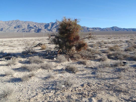 A desert area just outside of Mesquite, Nevada in Clark County.