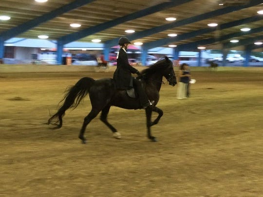 London Cariani showing at the state 4H horse championships