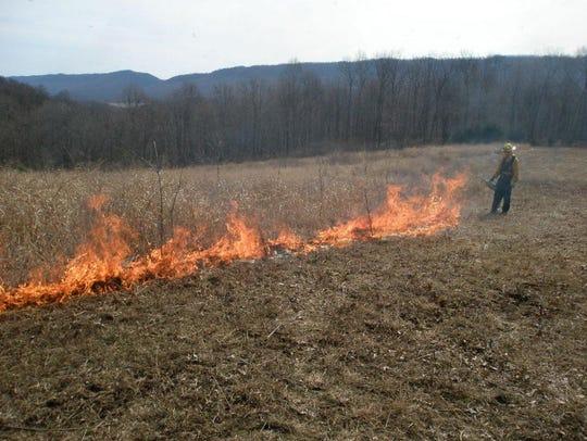 State gamelands prescribed burn