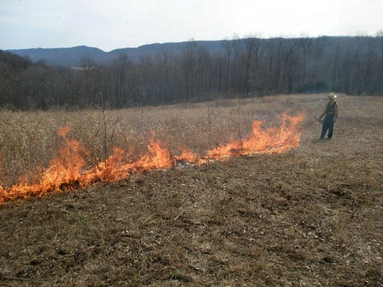 State gamelands prescribed burn
