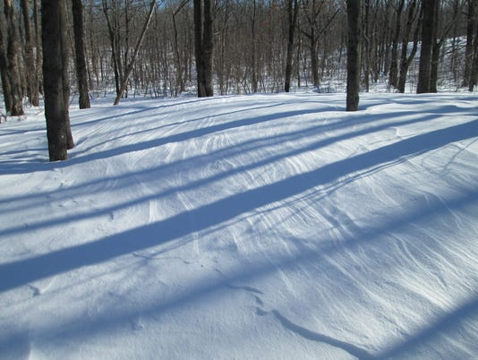 636160470221220474-sastrugi-and-shadows-in-snowy-woods-1024x768-.jpg