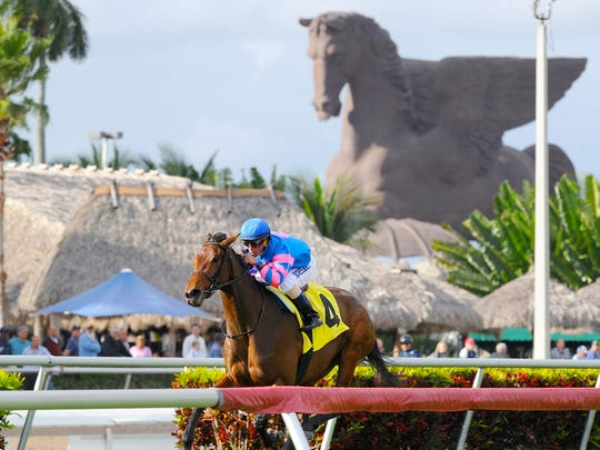 The Pegasus World Cup