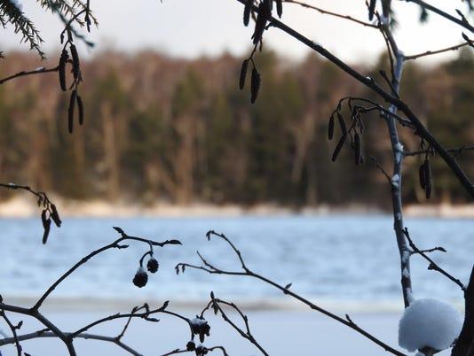 636486949704551996-Frozen-lake-through-the-alders.jpg