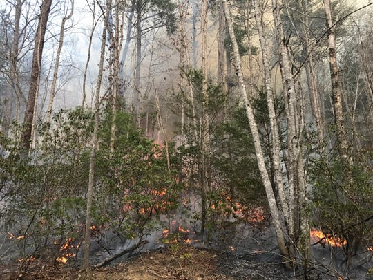 The cause of a 30-acre wildfire burning in the McDowell County area of Pisgah National Forest is under investigation.