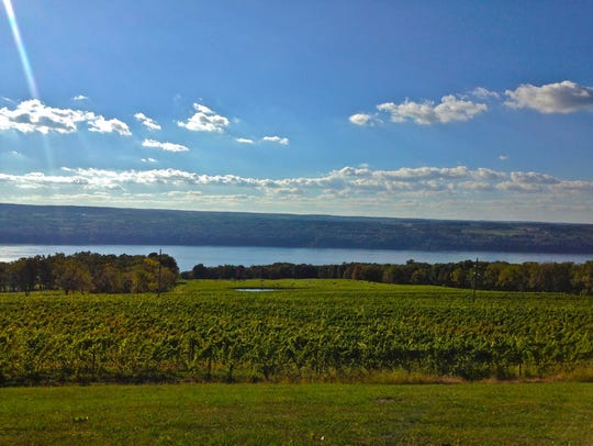 The view from Chateau LaFayette Reneau.