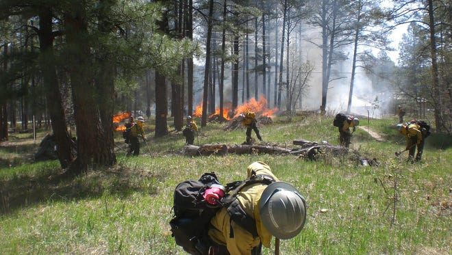 Crews from the Smokey Bear Ranger District burn piles of slash collected from previous fuel reductions projects.