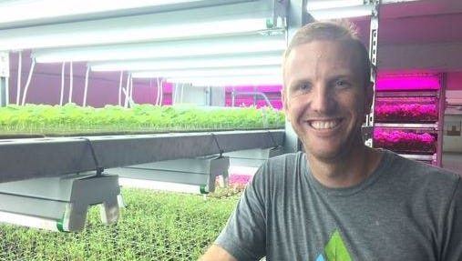 Brian Ernst, owner of Ernessie Organics of Ripon, decided to turn his hydroponic hobby into a company.
