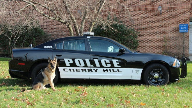 Cherry Hill police officers will be assigned to the township's 19 schools, effective Monday, officials say.
