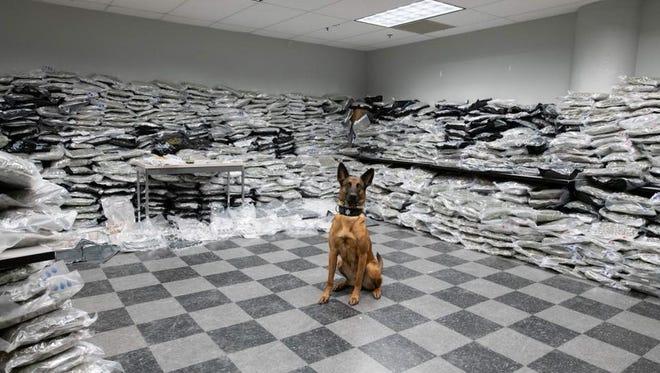 A Chicago police dog makes a 10 million dollar drug bust.