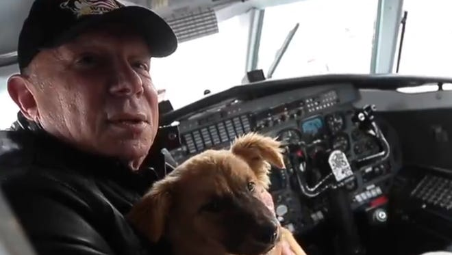 Animal shelters from all over the greater Memphis area assemble some 100 dogs on the tarmac at the Memphis Airport to be flown to Pacific Northwest where they can be more easily adopted during a Wings of Rescue airlift for at-risk animals.