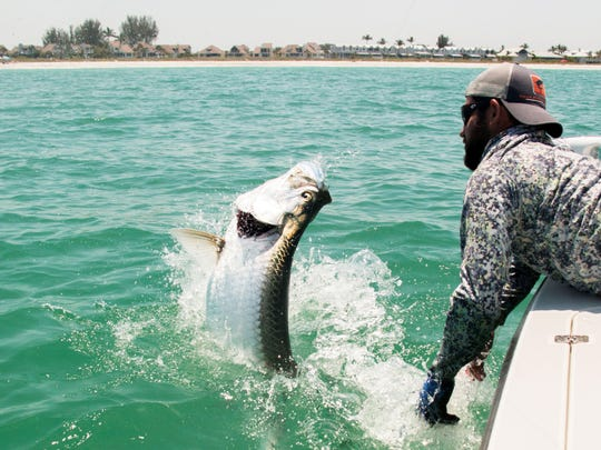 As a fishing captain, Daniel Andrews specializes in helping his charter customers bring in big tarpon.