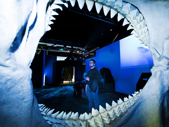 Planet Shark: Predator or Prey explores the underwater