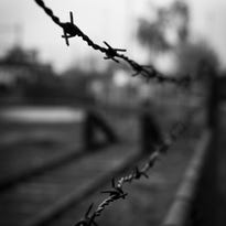 Barbed-wire prison fence