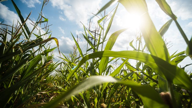 The proposed rule would restrict farmers from applying nitrogen fertilizer in the fall or on frozen soils in areas of the state that are vulnerable to nitrate contamination.
