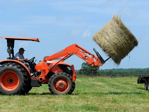 Rick Cowart loads a bale of hay Wednesday at Marilyn Sierling's farm in Midway. Baxter County Extension Agent Mark Keaton said this year's crop is being harvested later than usual due to late spring rains.