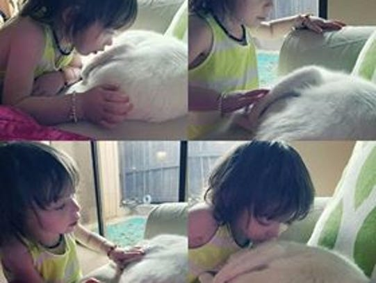 Charley, 4, pets her cat, Angel, who went missing for