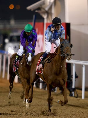 Prince Bishop wins the Dubai World Cup at the Meydan Racecourse on March 28, 2015 in Dubai, United Arab Emirates.