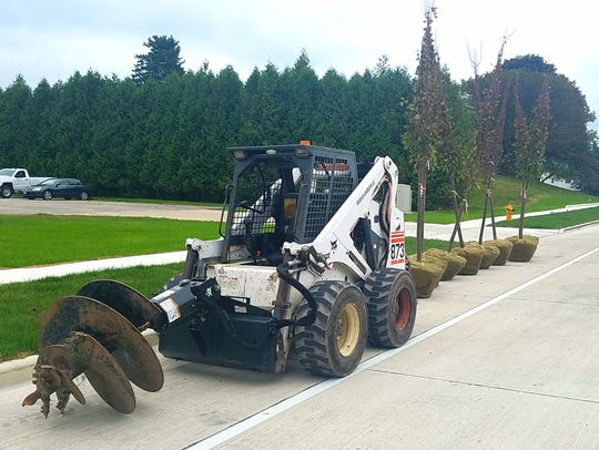 Trees await being planted as part of the Lincoln Avenue