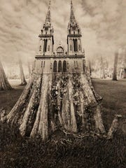 Jerry Uelsmann often uses trees and roots in his surreal