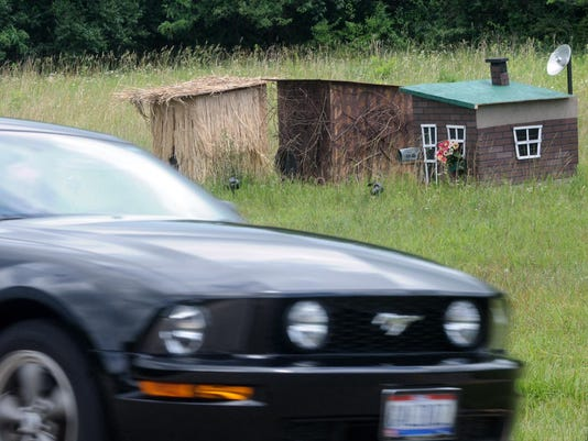 Pigs Loose Houses