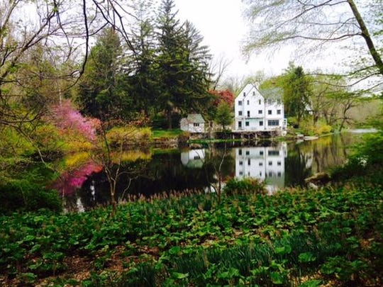 Dr. Robert Seebacher's Ossining garden, known as Rivendel, will be open on July 12 as part of the 19th annual Croton Arboretum Garden Tour.