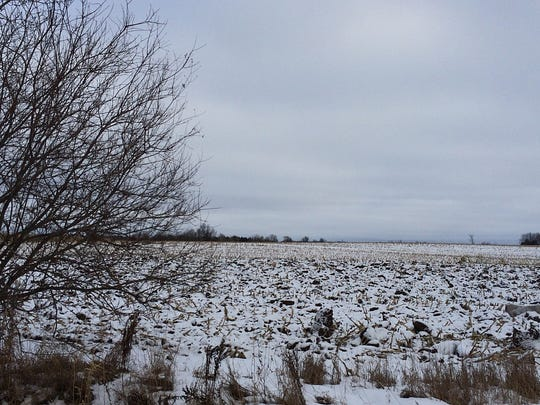 Looking east from Erie Road, this image shows another view of the largely farmland area that would be redeveloped.