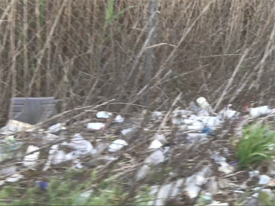 Litter along Route 17 in Lodi