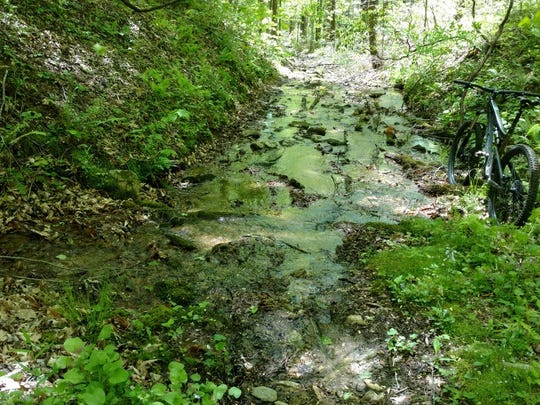 Cantrell Creek Trail in Pisgah National Forest is one of more than a dozen trail improvement proposals by the U.S. Forest Service. The  heavily used trail has been badly eroded, causing damage to the stream.