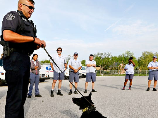K-9 Handler Lt. David Godfrey, left, and Capt. Dargo Bett Silver, both of York County Sheriff's Office, lead a canine awareness demonstration for postal carriers at the US Post Office West York Carrier Annex on Smile Drive in York, Thursday, May 26, 2016. Dawn J. Sagert  photo