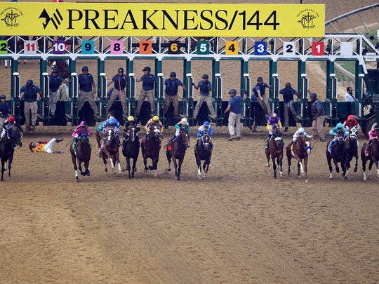 Jockey John Velazquez tumbles to the track after falling off Bodexpress (9) as the field breaks from the starting gate in the 144th Preakness Stakes horse race May 18, 2019, at Pimlico race course in Baltimore. War of Will, far right, ridden by Tyler Gaffalione, won the race.