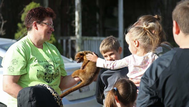 Owner of the Cricket Hollow Zoo, Pam Sellner introduces a kinkajou to a group of home school children on a field trip to the zoo on Wednesday, Oct. 21, 2015 in Manchester. The two-year-old kinkajou was raised by Sellner at the zoo.