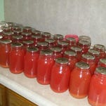 The Eicher family canned 45 quarts of rhubarb juice on a recent day.