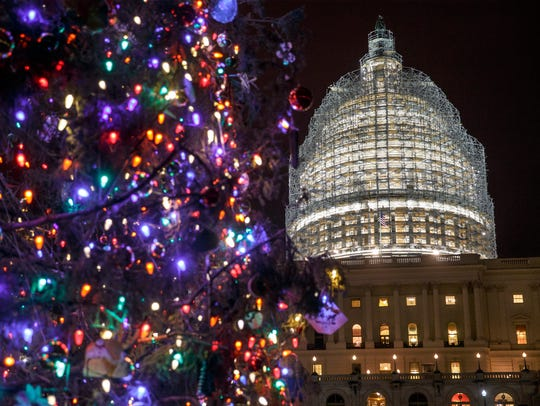 The Capitol Dome and the Capitol Christmas Tree are