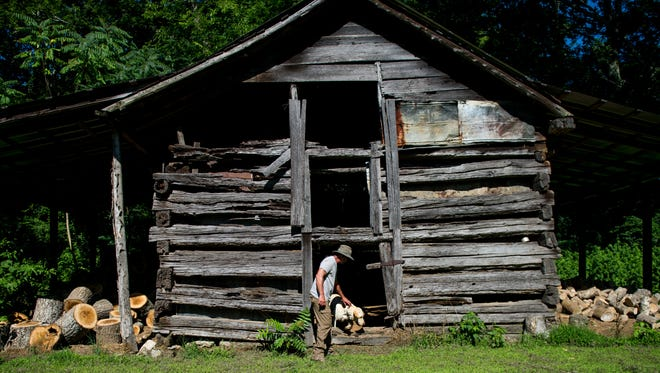 "Aaron ""Ace"" Wilson pets his dog Camo in front of the log cabin where Wilson's grandmother, Gladys Bond, was born in the corner of the Wilson Family Farm in Bethesda, Tenn., Monday, July 10, 2017. Since Wilson was a young boy he knew the farm that has been in his family since 1893 was special, ""It's where I always wanted to be, "" says Wilson."
