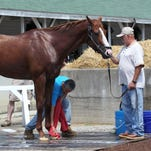 Fans can watch Justify, other Belmont hopefuls train at Churchill Downs
