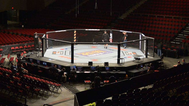 File photo of an MMA octagon.