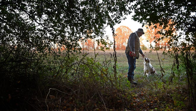 "Streams that feed the Cumberland River could be restored under a proposed environmental development at Neely's Bend. Farmer Steve North, who owns the land, is seen with his dog ""Colonel"" near invasive hedges that surround the streams Monday Nov. 21, 2016, in Nashville, Tenn."