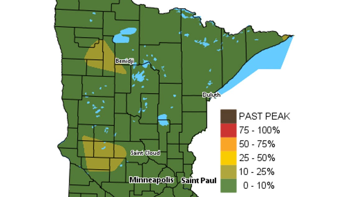 mn dnr fall color map with 15322477 on Ci 18853826 as well One Of The Best Weeks Of Fall Shaping Up further 277030481 furthermore Get Ready For Fall Colors as well Fall colors.