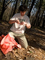 Lynn Levine, East Dummerston-based tracker, author, educator and consulting forester, examines mammal scat.