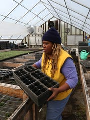 Karen Washington of Rise & Root Farm in Chester, works in a hoop house she shares with three other farms Feb. 22, 2017. She co-founded Black Urban Growers, which is based in the Bronx.