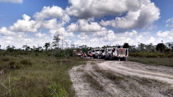 Survey crews and heavy trucks head into the Big Cypress National Preserve backcountry during a search for oil and gas this spring. The trucks are equipped with vibrating steel plates that are pressed against the ground and send back seismic signals that are analyzed for underground geological formations that may contain oil or gas. Environmental groups had sued to try to stop the work, alleging that the National Park Service did not review the plans carefully enough for potential environmental damage. Crews wrapped up their initial survey earlier this year and have not announced results.