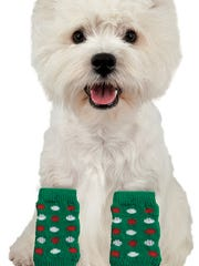 A West Highland White Terrier is photographed with leg warmers sold at PetSmart.