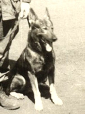The dog Gary Staub served with during his tour in Vietnam had been named Hitler by the military before Staub got him.