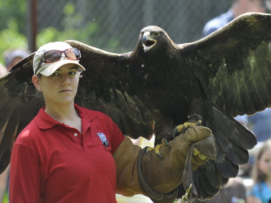 Advertiser file Join the Montgomery Zoo for Zoo Weekend 9 a.m.-6 p.m. Saturday and Sunday. Enjoy a festive environment with live entertainment, games, rides, concessions and animals from around the world.Sarah Martin takes care of Aspen, a golden eagle, during Zoo Weekend at the Montgomery Zoo on Saturday, March 31, 2012, in Montgomery, Ala.. (Lloyd Gallman, Montgomery Advertiser)