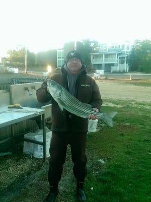 Bill McKenna Jr. with a 31-inch keeper striped bass he caught on Harvey Cedars beach.