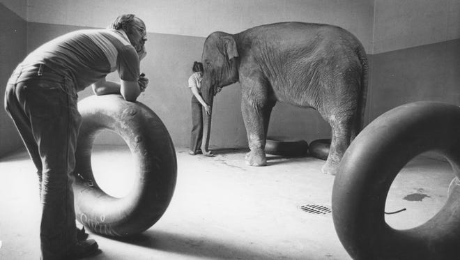 Bingo, Potter Park's Zoo's first elephant, in an undated photo.